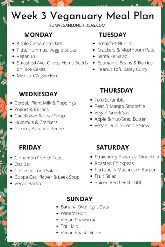vegan meal plans for families