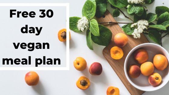 Free & Easy 30 Day Vegan Meal Plan