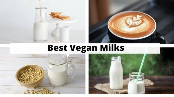 Choosing The Best Vegan Milk For You!