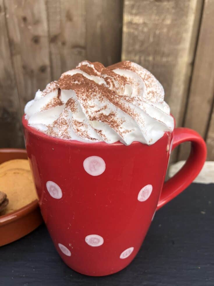 Delicious Oat Milk Hot Chocolate