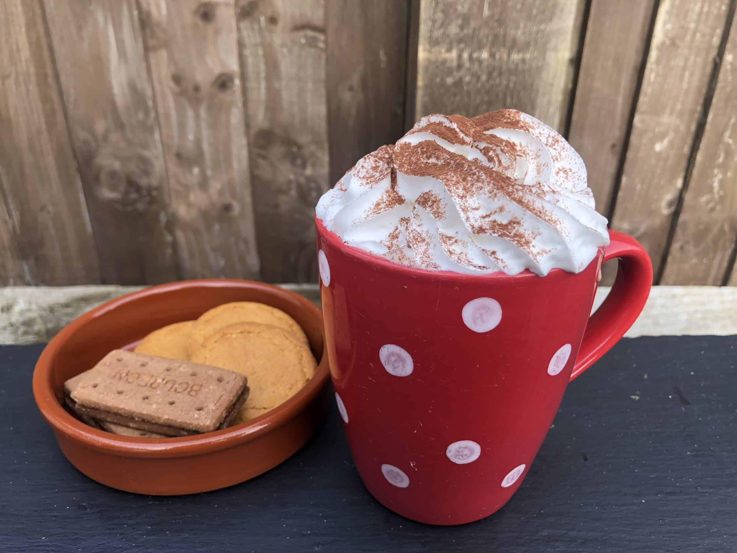 Delicious & Decadent Vegan Oat Milk Hot Chocolate Recipe